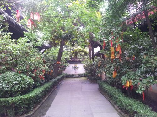 Konfucius, oáza pokoja a čajová zmrzlina (Šanghaj II.)